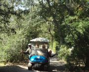 Explore Ocracoke Island - Wheelie Fun Cart Rentals