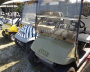 Rent For A Day, 2 Or 3! - Wheelie Fun Cart Rentals