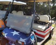 Carts With Personality - Wheelie Fun Cart Rentals