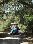 Wheelie Fun Cart Rentals photo