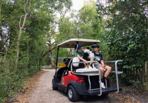 Ocracoke Island Golf Carts, Explore Ocracoke by Cart
